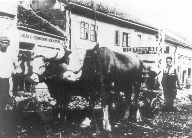 Kobasičarska radnja oca Tome Zdravkovića