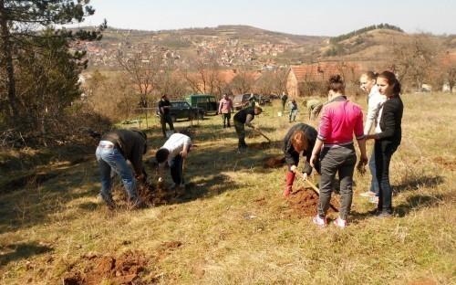 Међународни дан шума у Алексинцу