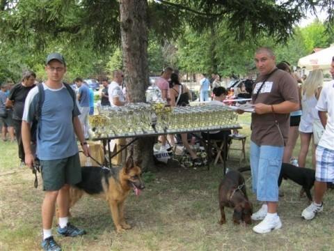Национална изложба паса у Алексинцу