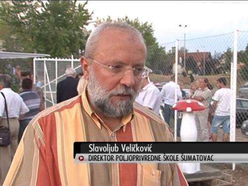 Saopštenje direktora Veličkovića povodom opužbi o zloupotrebama prilikom radova na novom objektu škole