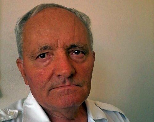 In memoriam: Видоје Цветановић