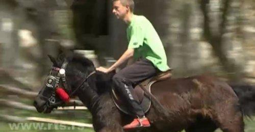 RTS: Porodična farma konja i magaraca