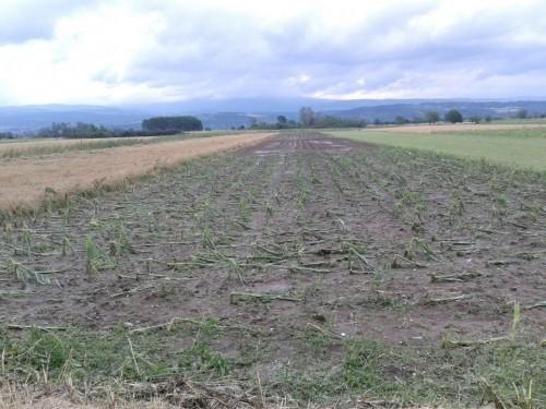 Пољопривредици погођени градом, на пријему код председника општине