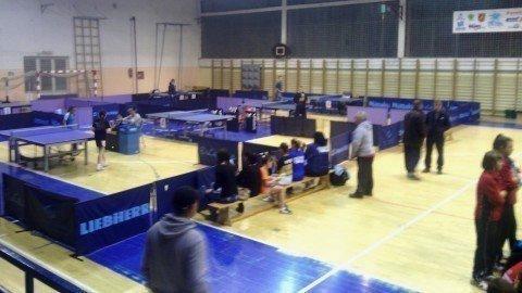 "Uspešno završen međunarodni stonoteniski turnir ""Aleksinac OPEN 2014"""