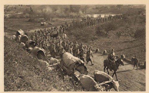 Повлачење српске војске долином Мораве, 1915. Самсон Чернов