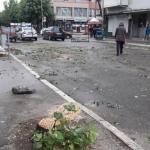 Jučerašnja seča stabala u glavnoj ulici nelegalno izvedena