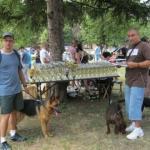 Изложба паса у Алексинцу