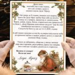 Алексиначки Деда Мраз