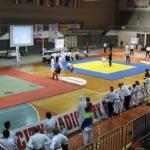 Медаље за алексиначке борце на турниру у Марибору