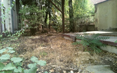 Nekadašnja bašta Doma vojske postala leglo prljavštine i korova