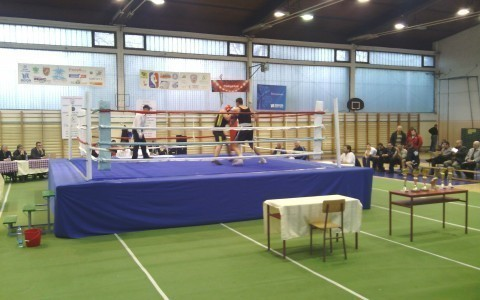 Бокс ушао на велика врата у Алексинац