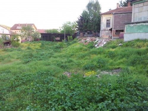 Stari školski centar leglo šuta i zmija
