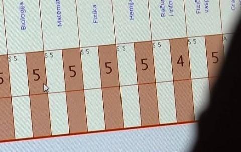 Školski dnevnik na internetu