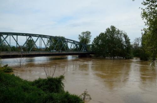 Šteta od poplava u opštini Aleksinac oko 29 miliona dinara