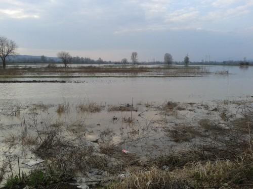Poplavni talas stigao do Aleksinca