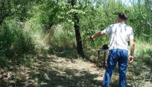 U voćnjaku nađeno beživotno telo: Pucala sebi u grudi iz očevog pištolja?