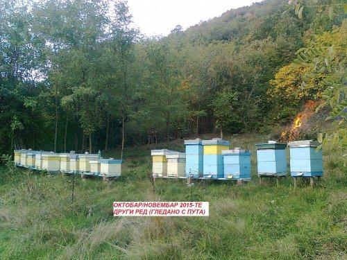 Krađa na pčelinjaku u Bovnu