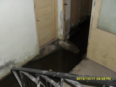 Све више поплављених подрума у Алексинцу