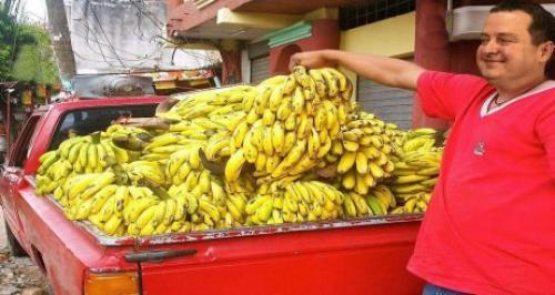 Osvrt: Banane i drugo voće