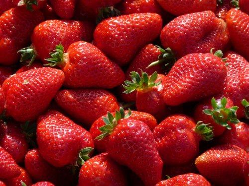 Произвођачи јагода задовољни и родом и ценом