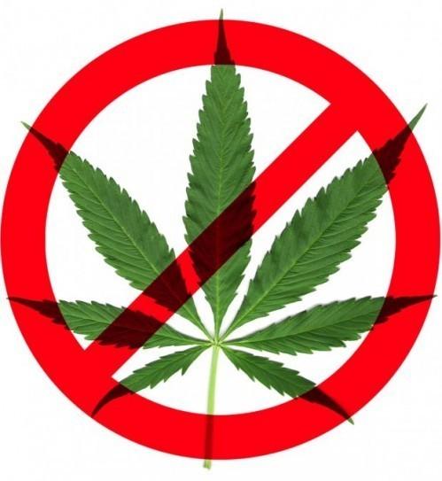 Ваш мозак на дрогама: Марихуана