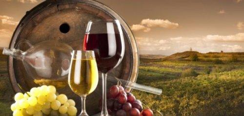 Есеј о вину – 2014.
