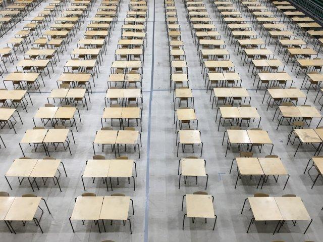 """Nivo znanja osnovaca zabrinjava nakon """"korona"""" školske godine pred testirnje"""
