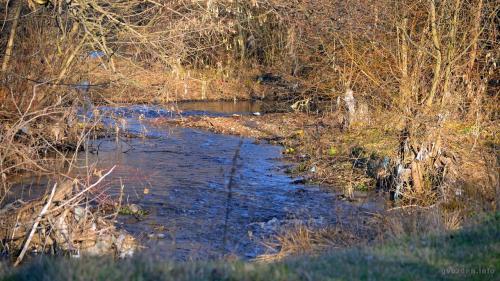 Анкета: Стање животне средине општине Алексинац