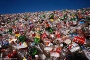 Plastične kese kao ekološki problem