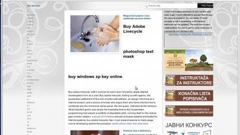 Сајт локалне самоуправе нарушава углед општине Алексинац