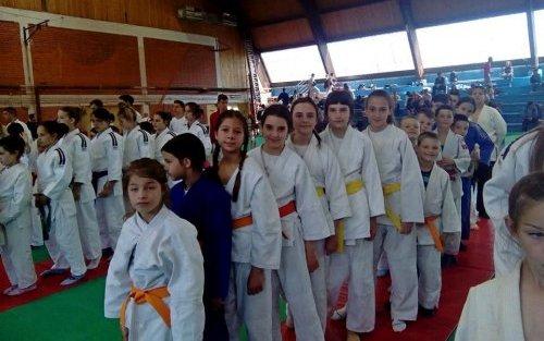 Međunarodni turnir u Brusu: Devet medalja za aleksinačke džudiste