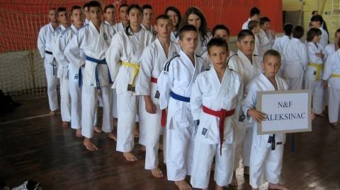 Државно првенство КУП Србије у џиу џици Зрењанин 2013.