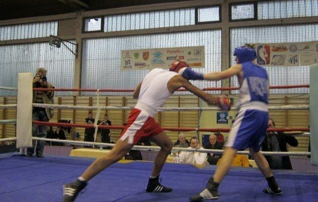 Боксерска рукавица Фото Душан Стевановић