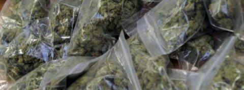 САЈ пронашао фабрику марихуане у Гредетину